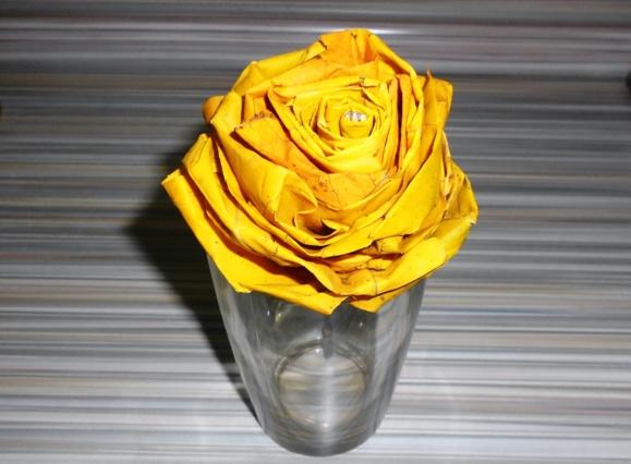 Роза из ли