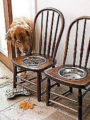 Собачья сумка в стульчике