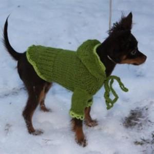 Вязаная олимпийка для собаки
