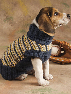 Пестрый свитер для собаки