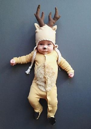 Очаровательный оленёнок