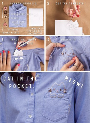 Котик в кармане
