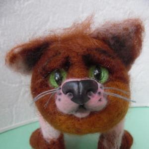 рыжий коте