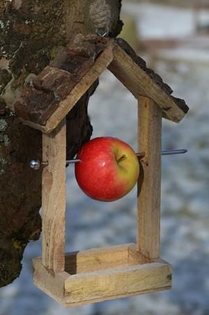 Кормушка из дерева