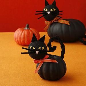 Кошка на Хэллоуин