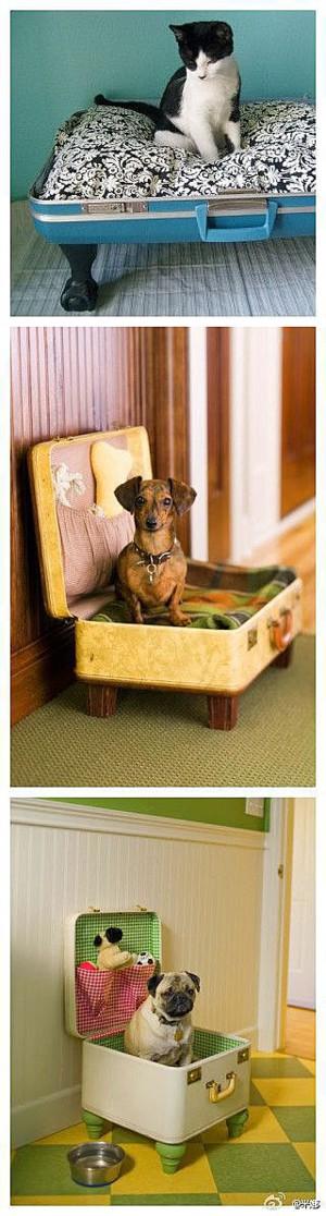 Диван для животного из старого чемодана