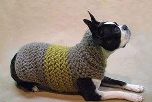Вязаная попонка для собаки