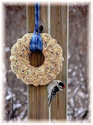 Приготовьте для птиц бублик