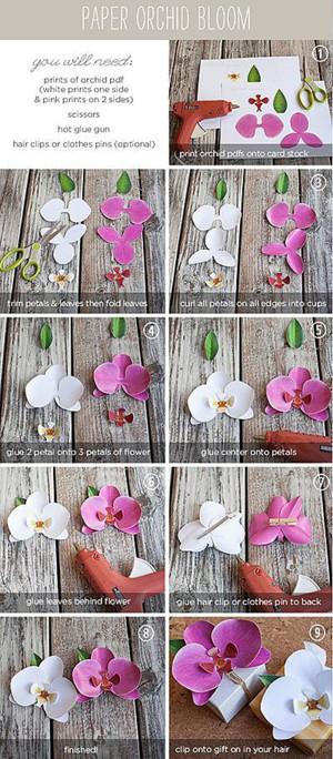 Бумажные орхидеи